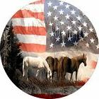 Horse #15 American Flag Spare Tire Cover Jeep RV Camper